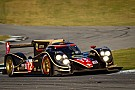 Rebellion Racing may take on ALMS P1 title fight in 2013