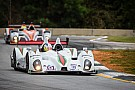 Ende returns with RSR racing for ALMS finale at Petit Le Mans
