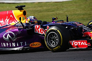 Mercedes and Ferrari only engine options, says Red Bull