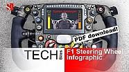 2014 F1 Steering Wheel Infographic - Sauber F1 Team